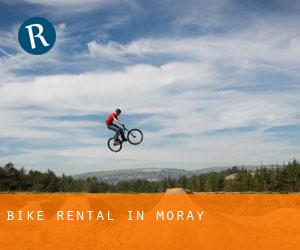 Bike Rental in Moray